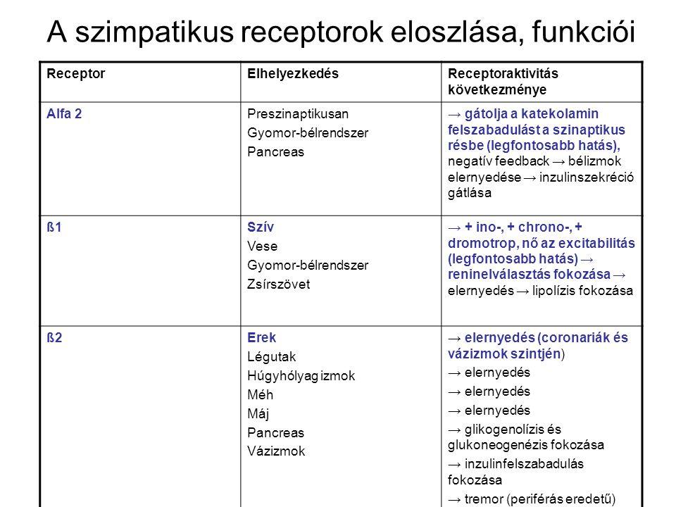 Az adrenerg blokkolók minden típusának teljes áttekintése: szelektív, nem szelektív, alfa, béta