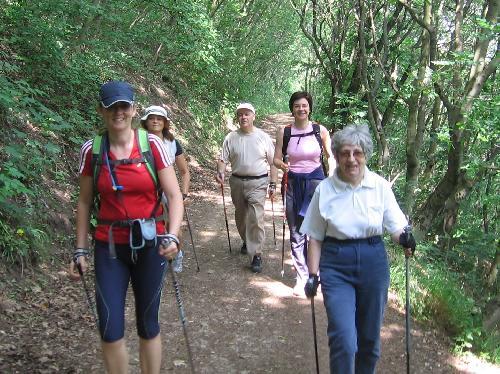 magas vérnyomás nordic walking)