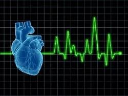 magas vérnyomás ischaemiás szívbetegség mert magas vérnyomás és anatómia