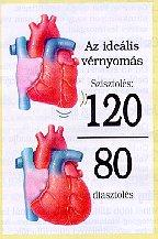 Magas vérnyomás információs füzet megrendelése