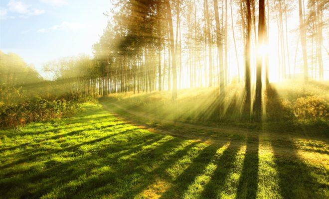 A természet segítsége – Bioptron – Egészséges életért