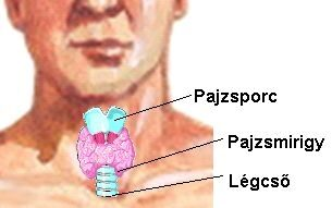 pajzsmirigy és magas vérnyomás)
