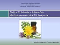 echinacea hipertónia)