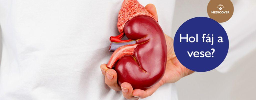 vese magas vérnyomás vizsgálata)