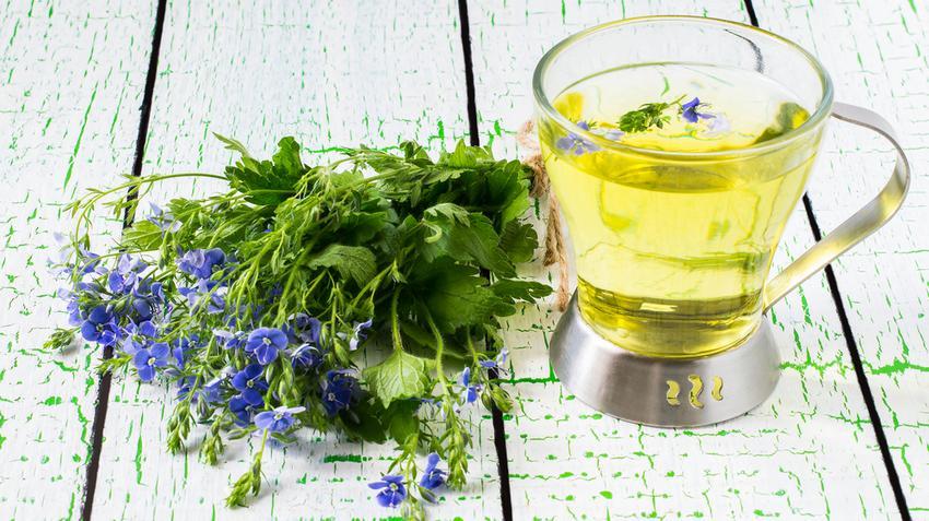 házi növények magas vérnyomás ellen jó recept a magas vérnyomás ellen