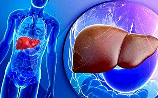 bilirubin és magas vérnyomás