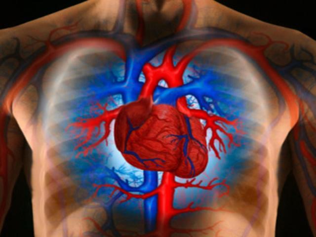 A magas vérnyomás növelheti a kognitív károsodás kockázatát   reformalo.hu