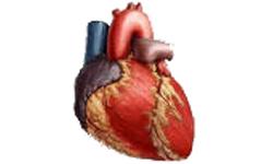 Először ültettek be vérnyomás-szabályozó pacemakert Magyarországon