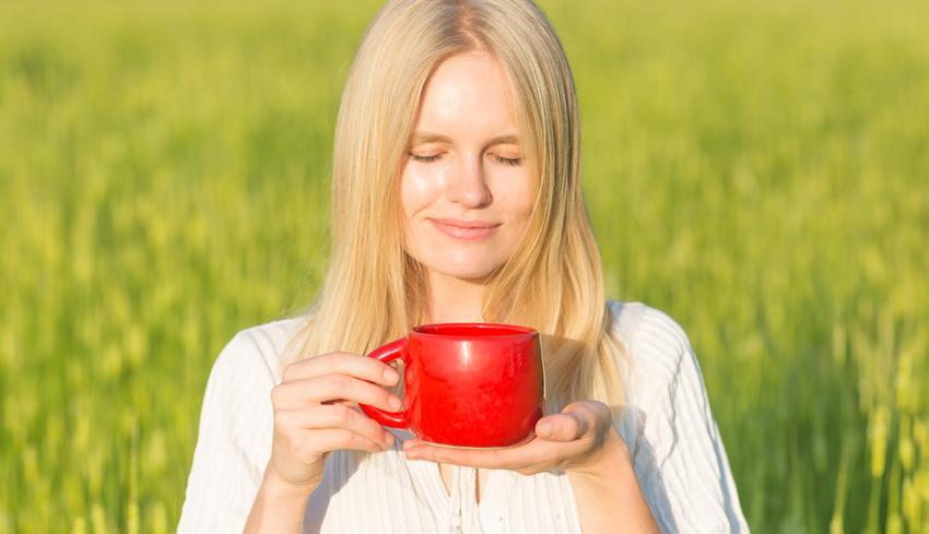 hatékony népi gyógymódok a magas vérnyomásról vélemények