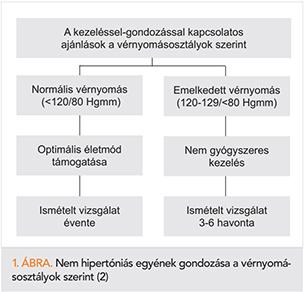a hipertónia kockázatának mértékének osztályozása)
