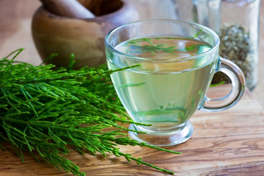 házi növények magas vérnyomás ellen magas vérnyomás és vese vibroakusztikus terápia