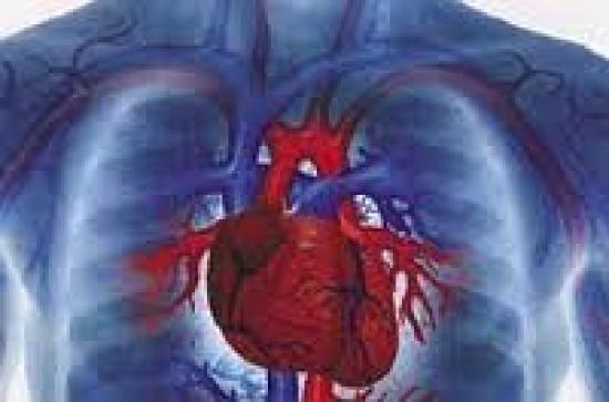 Tech: Ha fölött van a vérnyomása, van egy rossz hírük a kutatóknak | reformalo.hu