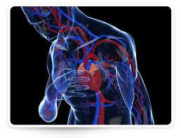 magas vérnyomás hogyan lehet elkerülni