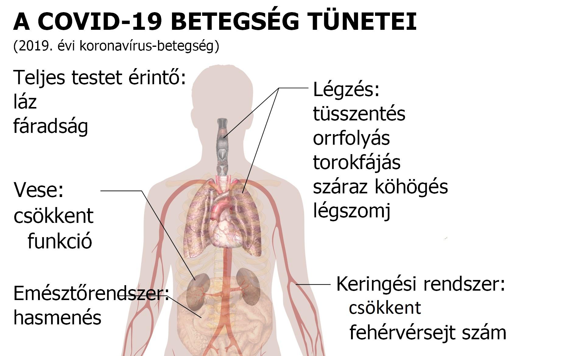 a pulmonalis keringés magas vérnyomásának következményei