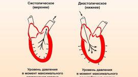 magas vérnyomás viselkedési szabályai)