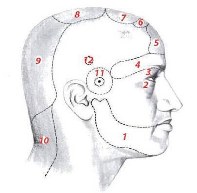 magas vérnyomással ahol a fej fáj d3-vitamin és magas vérnyomás