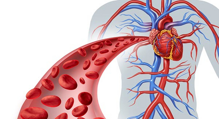 A magas vérnyomás pszichoszomatikus hátterének kezelése |