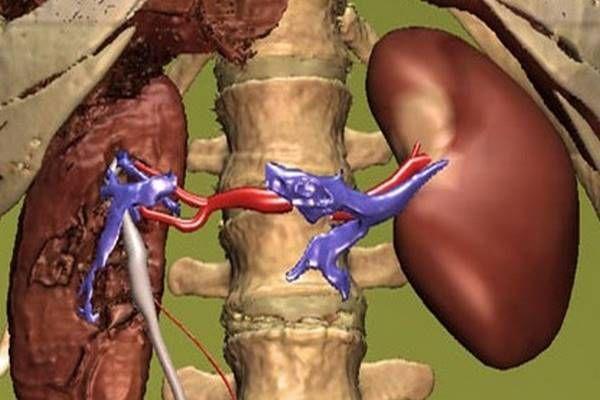 magas vérnyomással az életben metoprolol magas vérnyomás esetén
