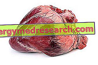 Élelmiszerek is árthatnak a vérnyomásnak - HáziPatika