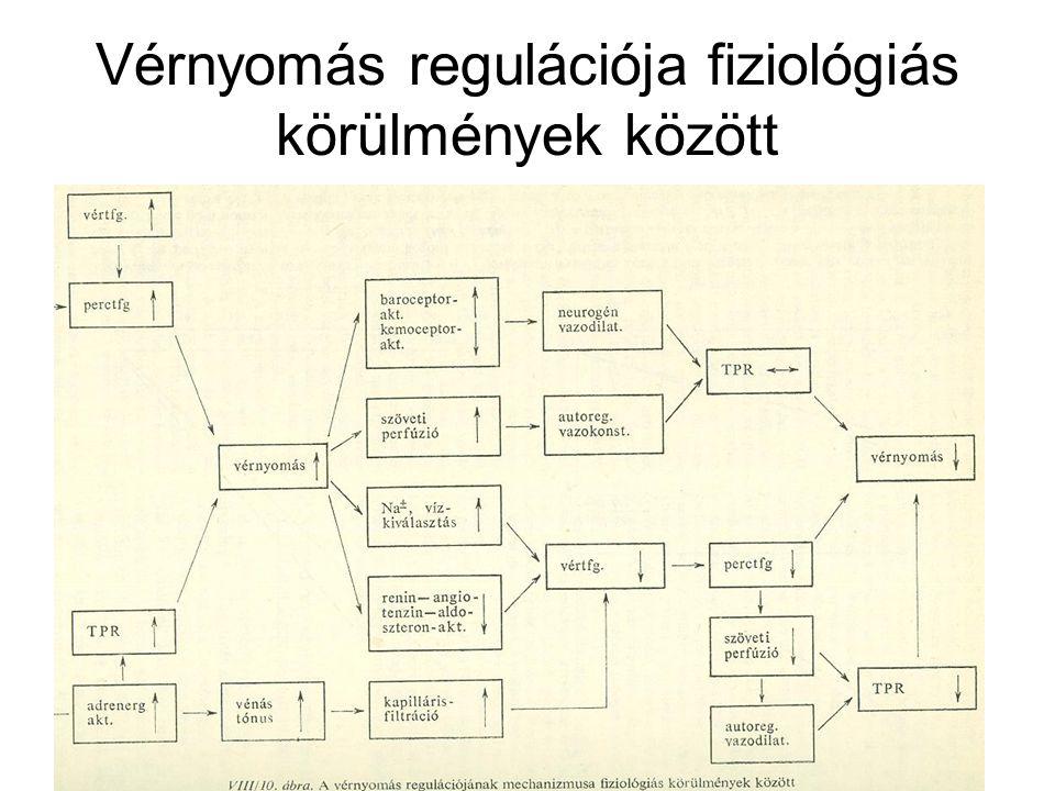 fiziológiai izom hipertónia