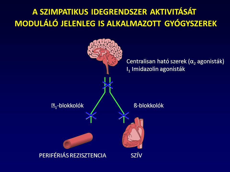 autonóm idegrendszer és magas vérnyomás hipertóniával milyen gyógyszerek