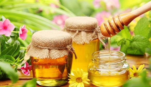 Gyógyító méz: melyik fajta mire jó?