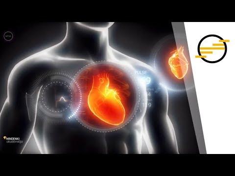 Hogyan lehet megkülönböztetni a magas vérnyomást és az IRR-t? - Magas vérnyomás November