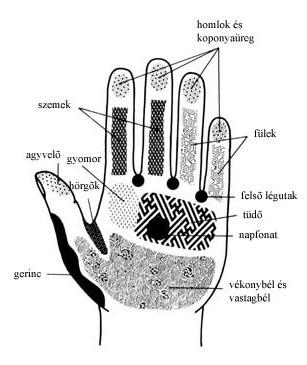 pontok a kezeken magas vérnyomásban)