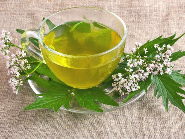 a zöld tea előnyei a magas vérnyomás ellen