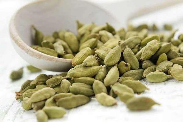 magas vérnyomás kezelése gyógynövényekkel