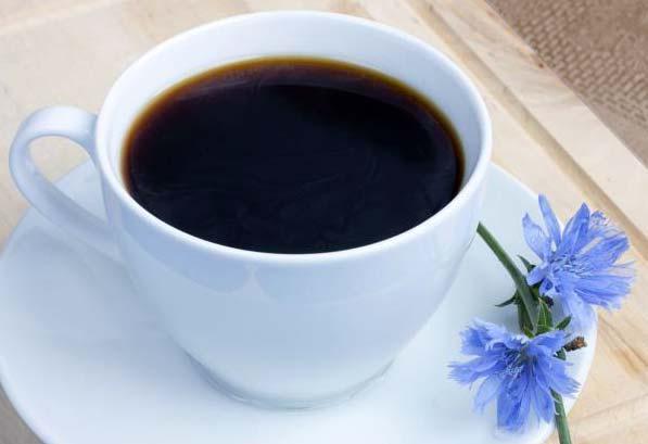 Cikória: nem csak kávénak jó